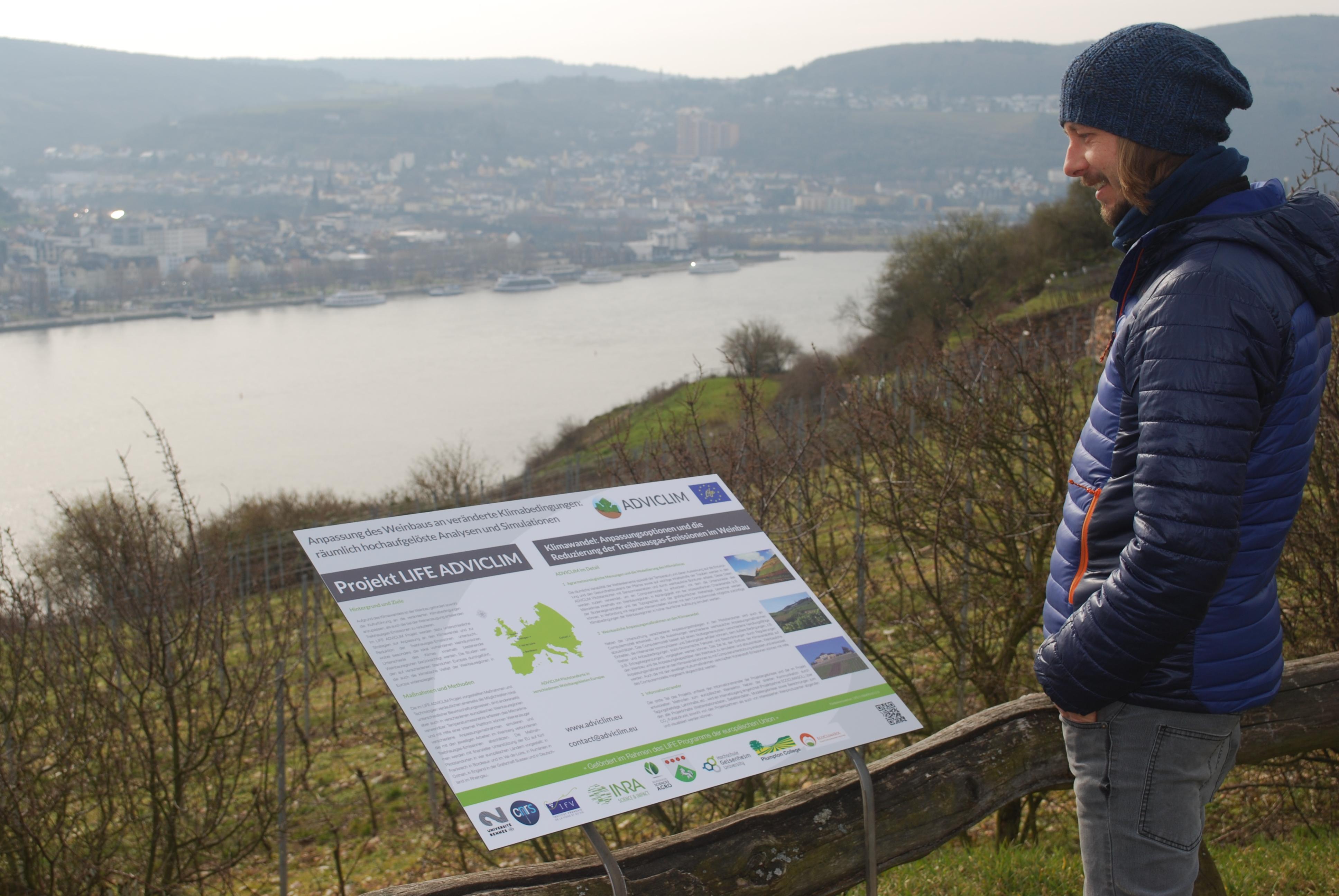 Notice Board - Rheingau