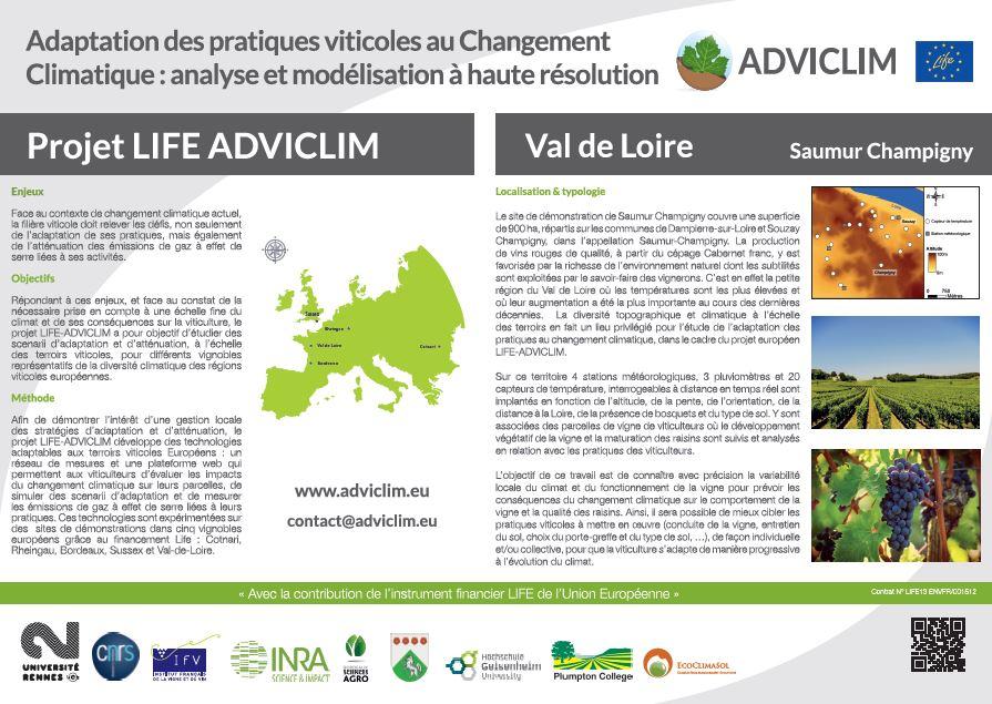 Notice board of Saumur Champigny
