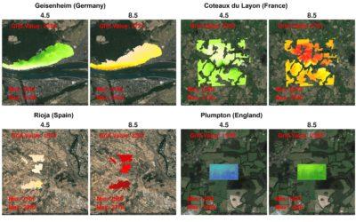 Modélisation climatique à l'échelle des vignobles dans un contexte de changement climatique