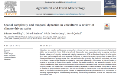 Spatial complexity and temporal dynamics in viticulture: A review of climate-driven scales