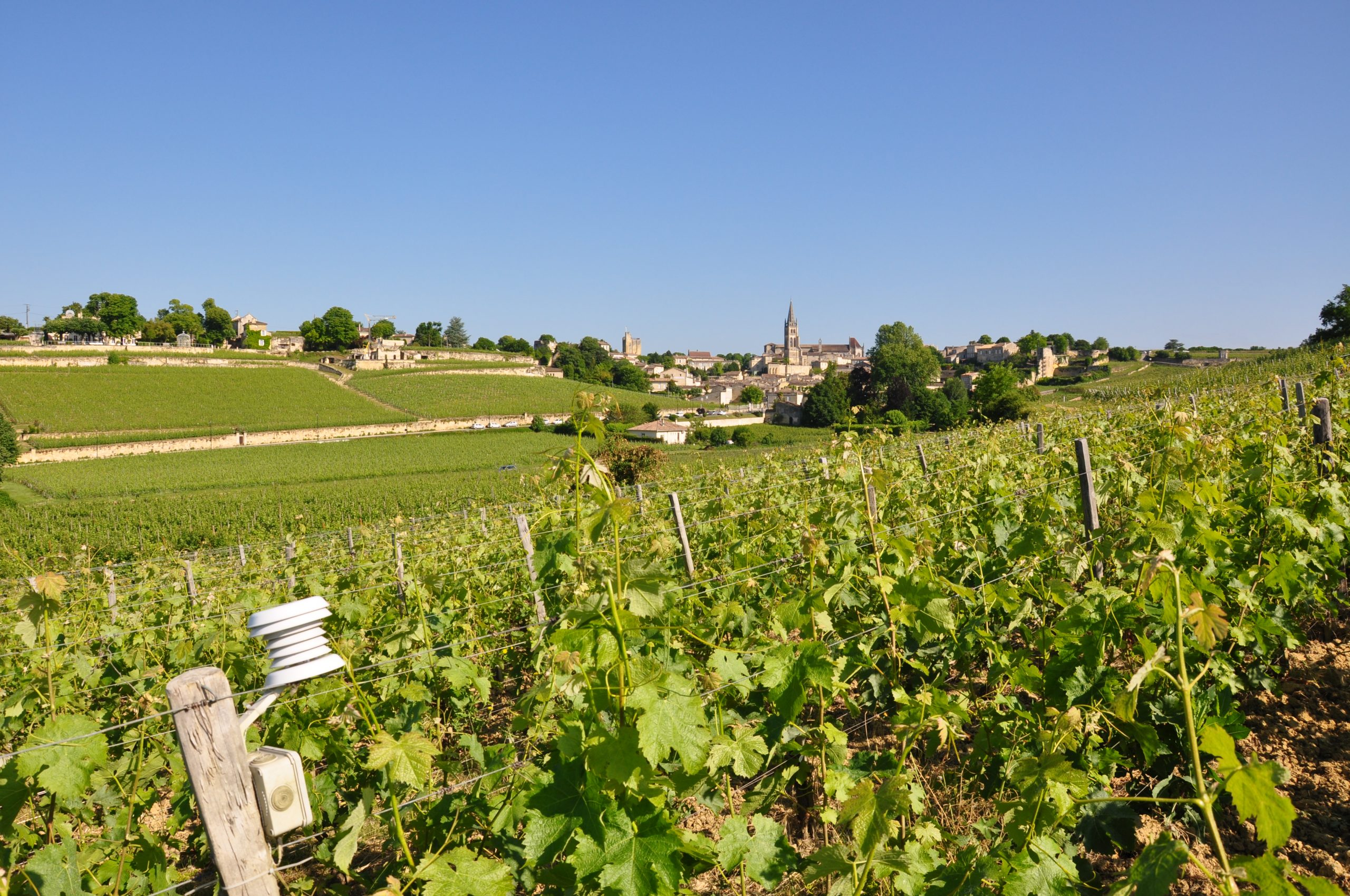 Life_ADVICLIM_Picture Library_Bordeaux_2015-10-01 (3)